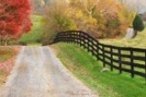 Rural Roads added to Preservation Virginia's 'Most Endangered' list