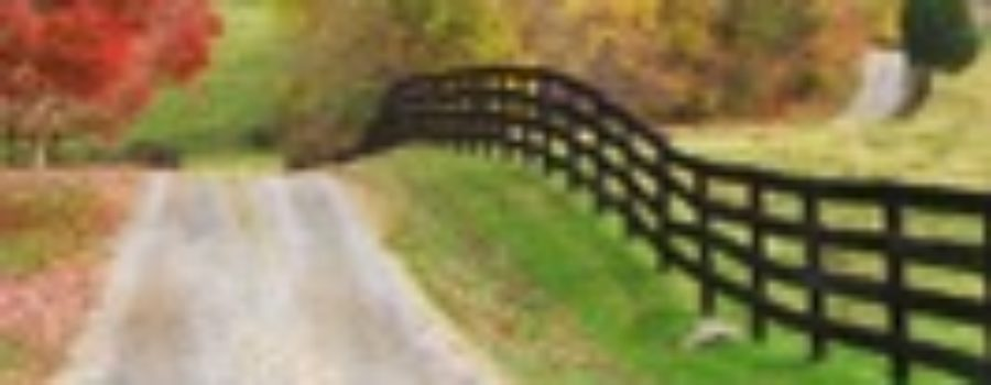 Rural Roads added to Preservation Virginia's 'Most Endangered' list