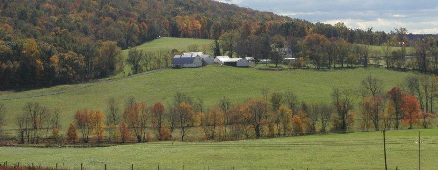 Rural Uses